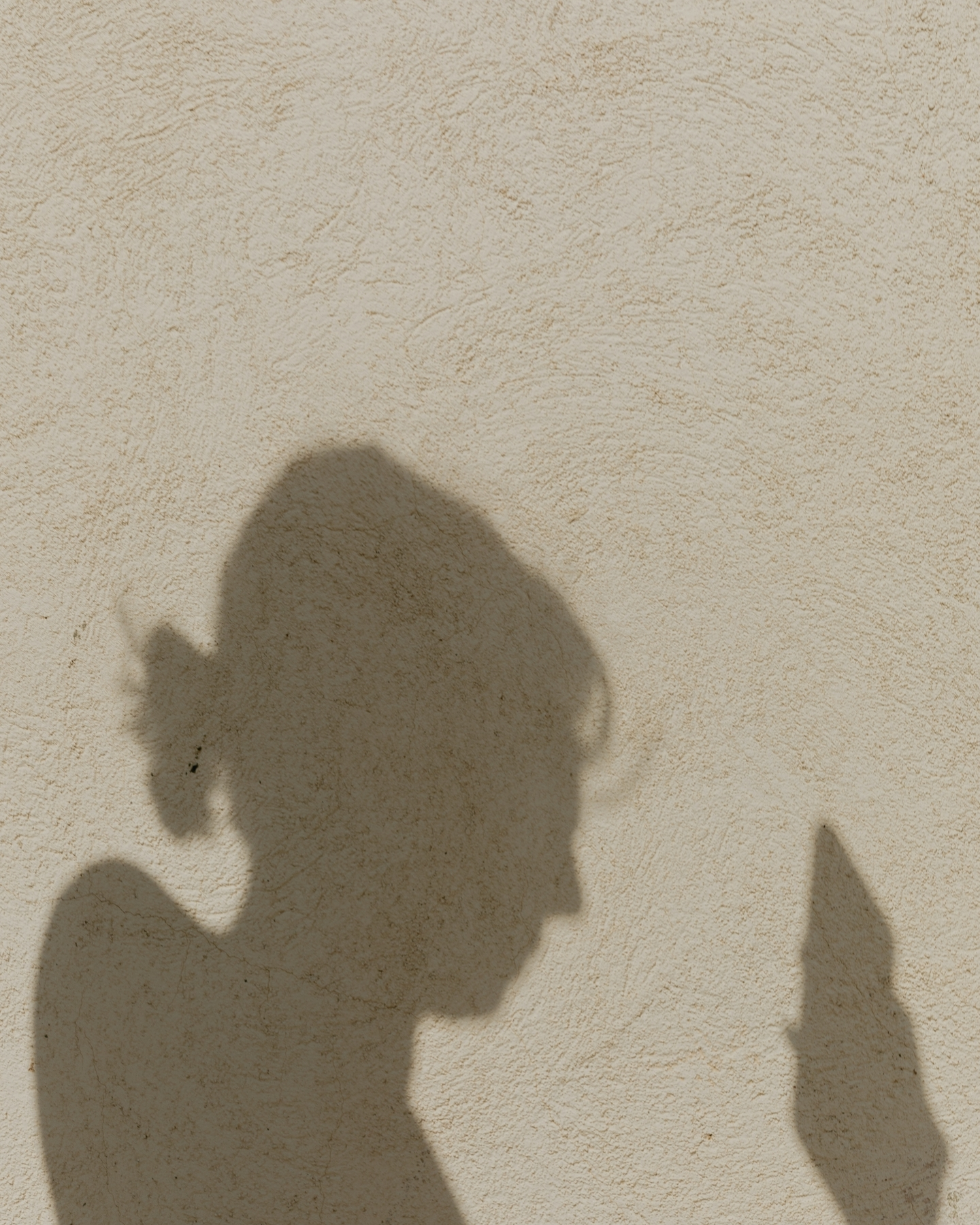Contact Shadow Person on Phone