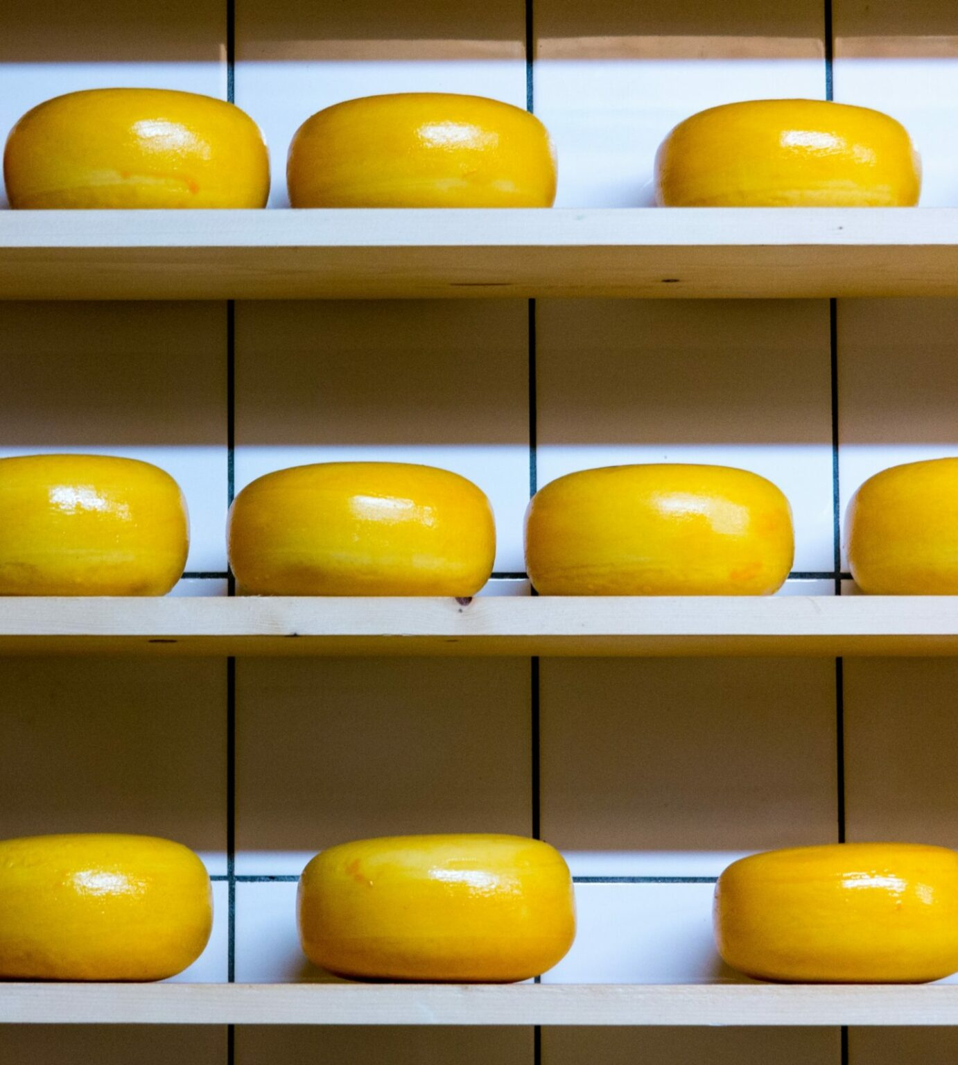 Wheels of cheese pantry essentials