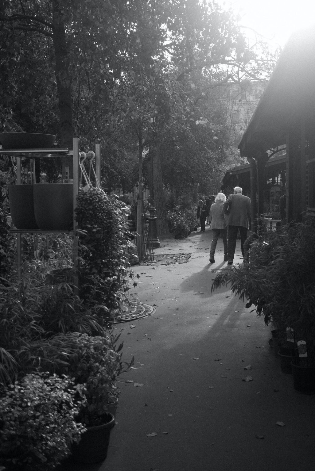 old couple walking in future city