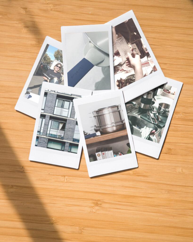 Founding ENSEMBL collage